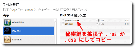 20130620-pilotSSH-1